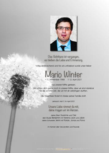 Parte von Mario Winter