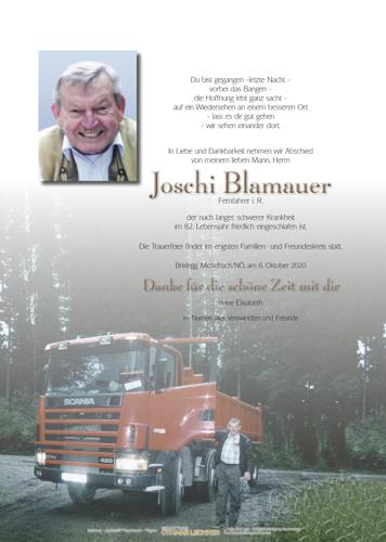 Parte von Josef Blamauer